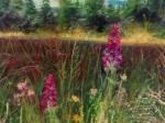 Kvetoucí Šumava , 70 x50 cm, pastel