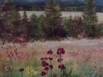 Šumavské květy ,70x50 cm olej,pastel